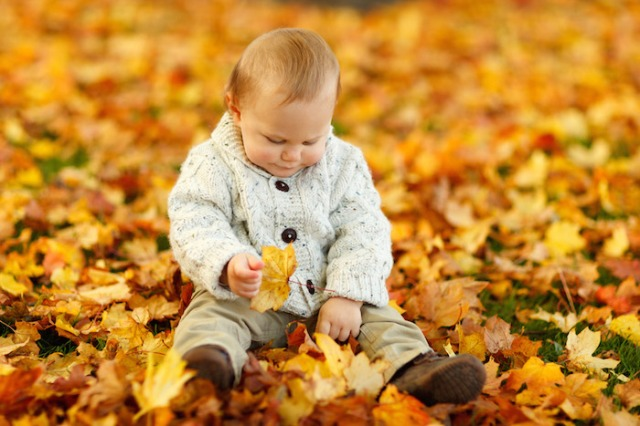 Boy Sitting In Park In Fall by Petr Kratochvil Public Domain