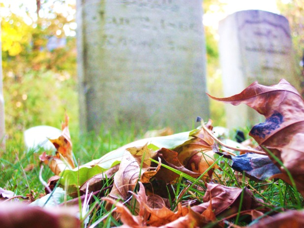Public Domain from http://www.publicdomainpictures.net/view-image.php?image=26917&picture=cemetery&large=1